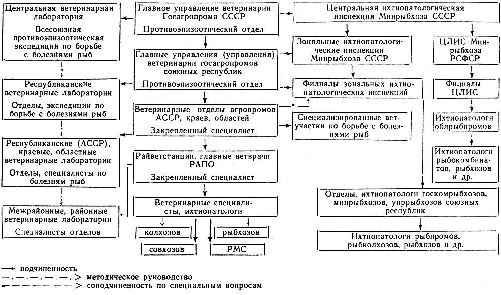 Схема организационной структуры ветеринарного обслуживания рыбохозяйственных водоемов