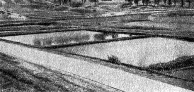 Рис. 6. Зимовальные пруды