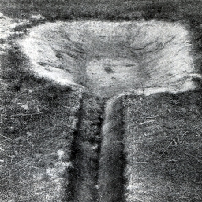 Дафниевая яма, соединенная канавкой с прудом